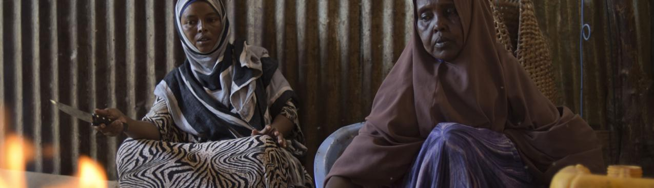 Tapping Renewable Energy for Peace in Somalia   SEforALL